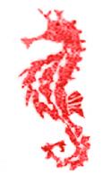 SeahorseWorks
